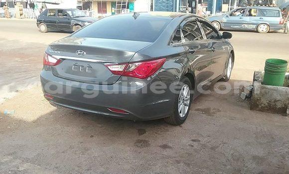 Acheter Voiture Hyundai Sonata Gris à Kaloum en Conakry